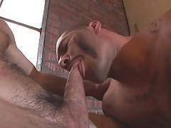 Mature bear gets his cock sucked by horny big toned bull.