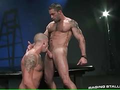 Two toned guys are enjoying awesome oral foreplay.