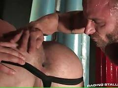 Big bear licks lover`s ass and slurps his hard shaft.