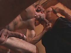 Older bear works his hungry mouth at dude`s eager cock and tight nuts.